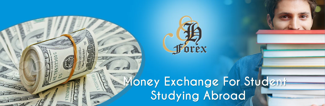 Grey heads forex p ltd